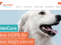 犬のがん治療に取り組むOne Health Company、a16zらから500万ドル調達